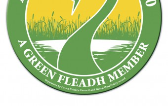 UsingLessEnergy_Banner_green_fleadh2