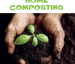thumnail-for-home-composting-poster2