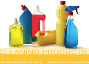 thumbnail-for-cleaning-products-300x256